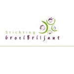 Stichting Groeibriljant